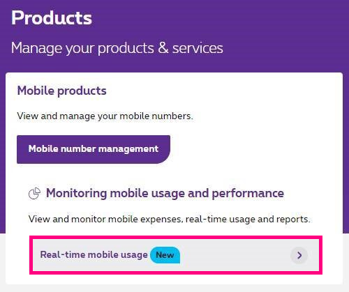 Real time mobile usage in MyProximus Enterprise